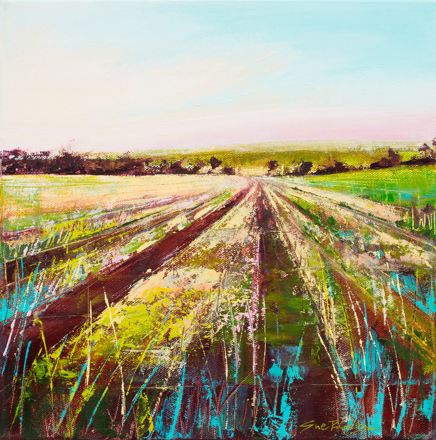 Sue Rapley Artist Available Landscapes Collection Earth Lines